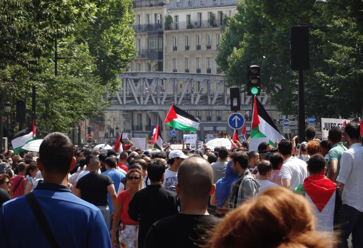 Manifestation interdite à Paris 19 juillet 2014 7