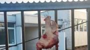 Tête de porc devant une mosquée