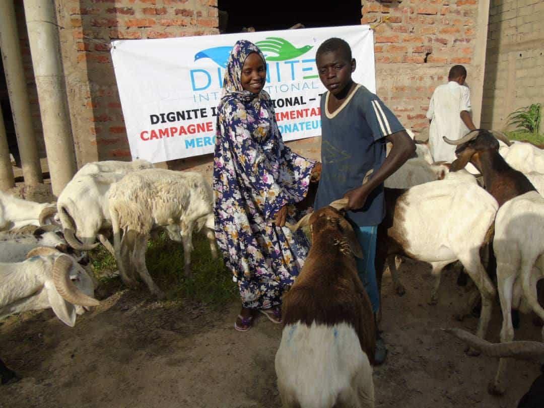 Campagne sacrifice 2019 Dignite International